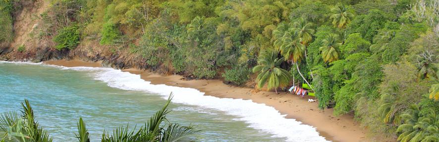 Тобаго – карибский остров Робинзона Крузо!