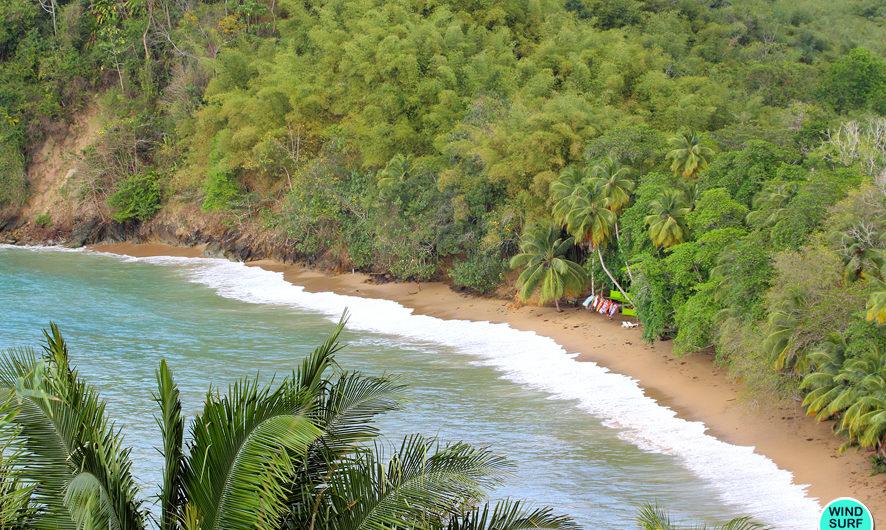 Тобаго — остров Робинзона Крузо!