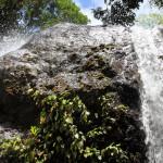 Водопад в Тобаго